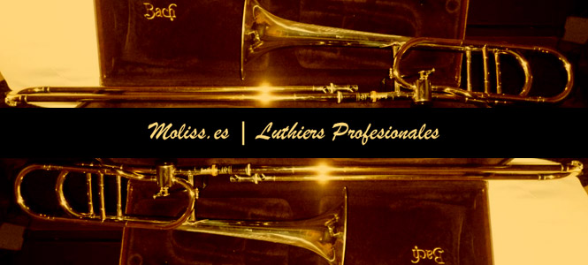 Moliss Luthiers